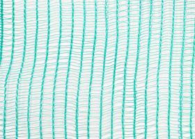 55g rectangulaire vert